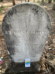 Annie (8 years) and Henry Clifton (6 years) were burnt to death at Spring Gully in 1827.
